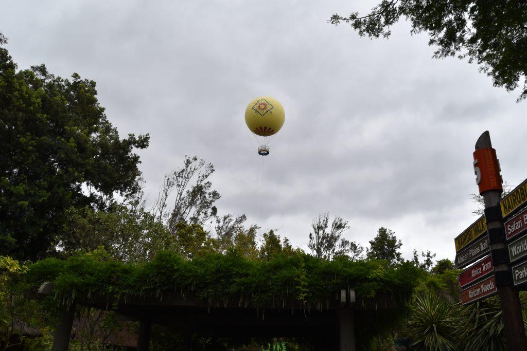 Balloon Safari at San Diego Safari Park
