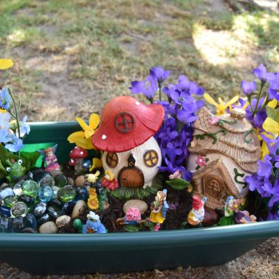 Fairy Garden: How to Build Your Own!