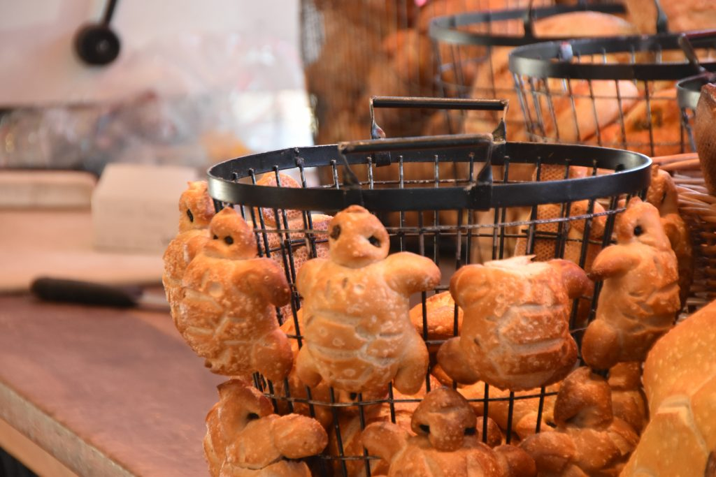 Turtle Shaped Bread at Boudin Bakery San Francisco