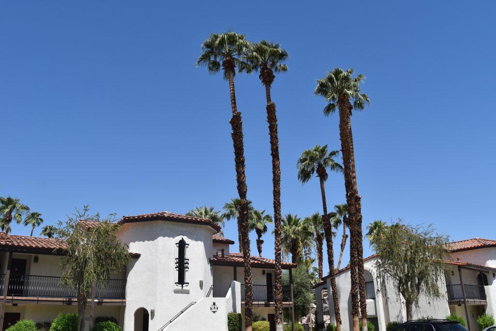 Omni Rancho Las Palmas-Hotel Rooms