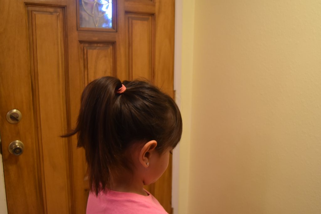 Fall-Inspired Crazy Hair Day Style-High Pony Tail