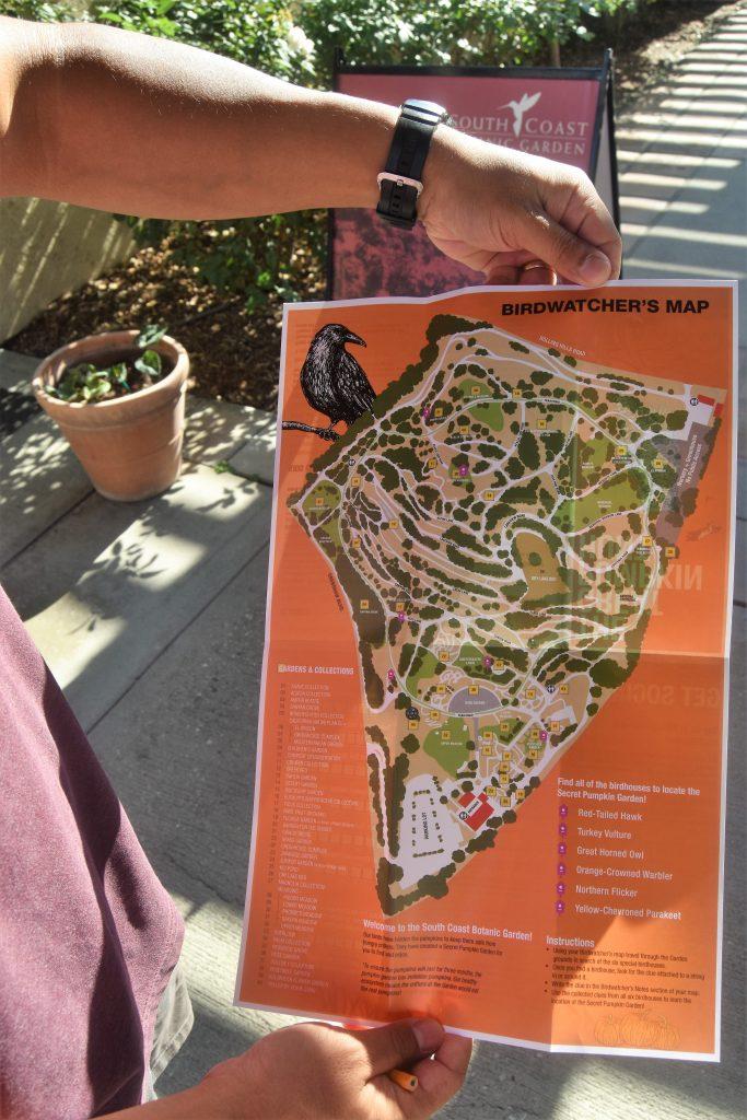 The Great Pumpkin Hunt: Hunt Map