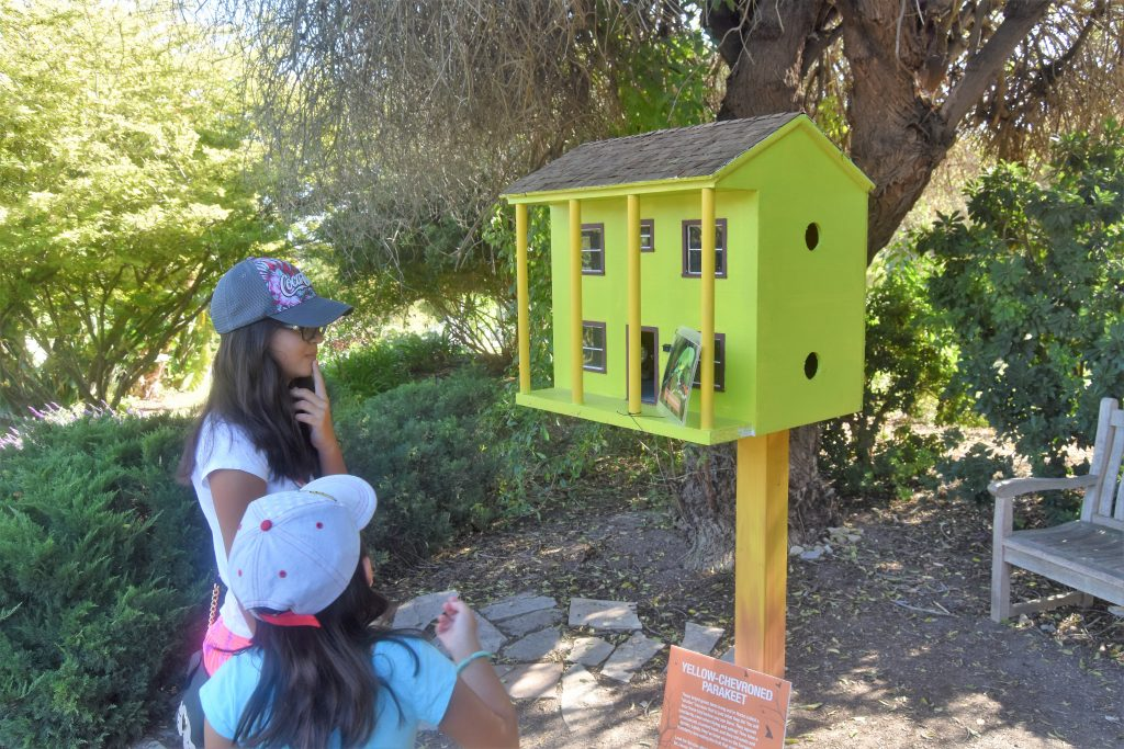 The Great Pumpkin Hunt: Kids reading clue at first birdhouse.