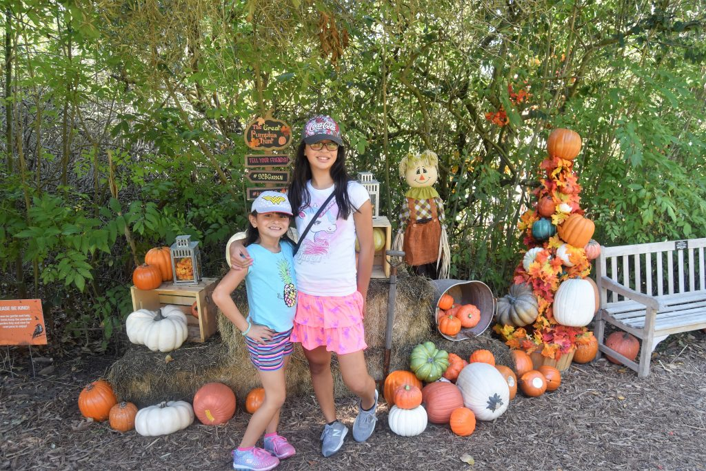 The Great Pumpkin Hunt: picture opportunity at the end of the hunt