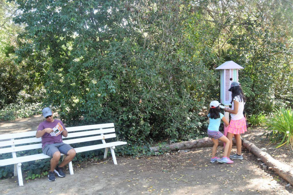 The Great Pumpkin Hunt at South Coast Botanic Garden- Kids running to the next clue