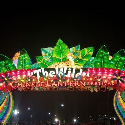 10 Tips For Visiting The Chinese Lantern Festival