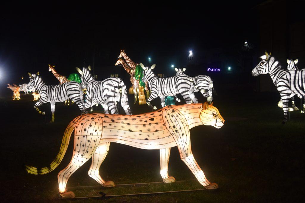 Animal lanterns at the Chinese Lantern Festival