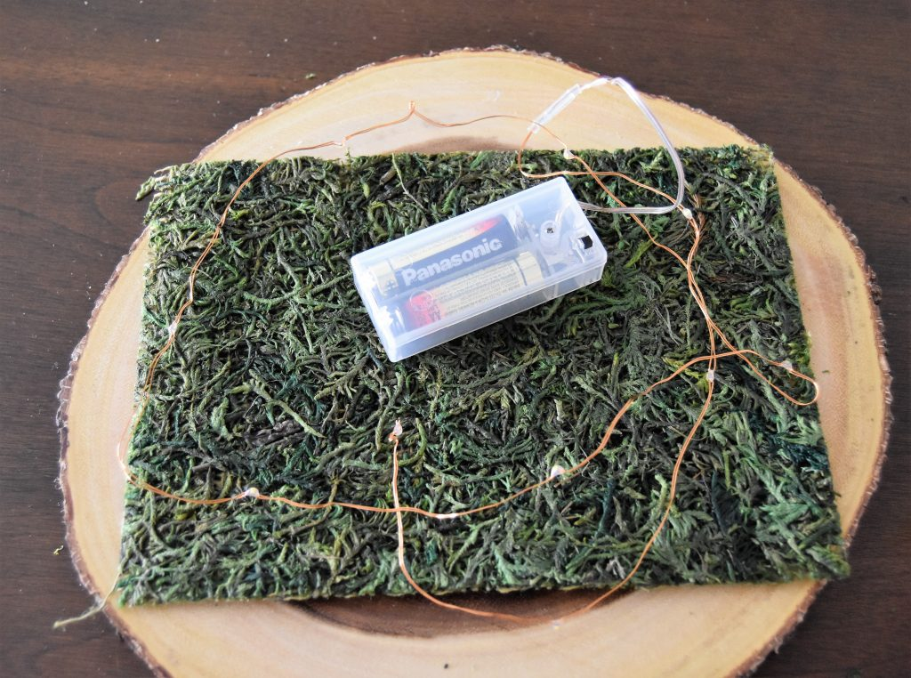 Moss square and twinkle lights on top of wooden slab- Fairy Cloche Centerpiece DIY