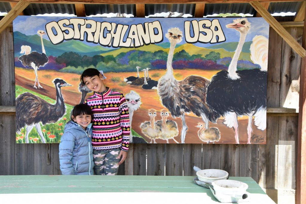 Girls in front of entrance picture- Ostrichland USA
