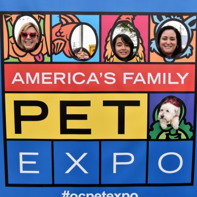 America's Family Pet Expo: A Pet Lover's Paradise!