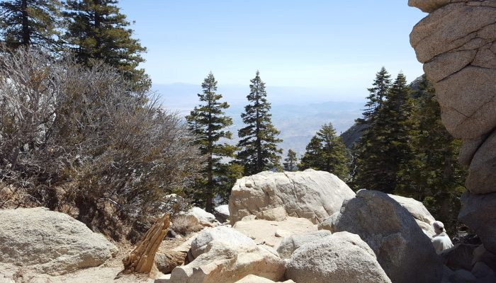 Palm Springs Aerial Tramway: Visitor Tips!