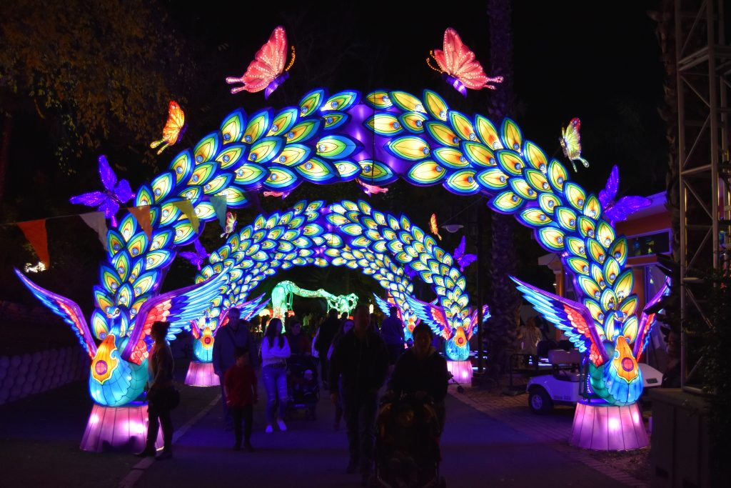 Peacock arch at Chinese Lantern Festival