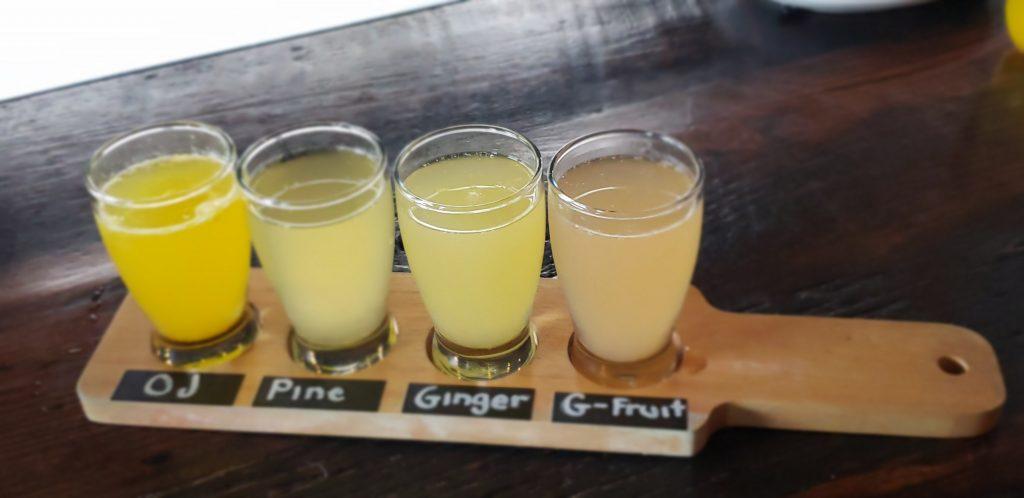 Mimosa Flight at Eureka! in Irvine