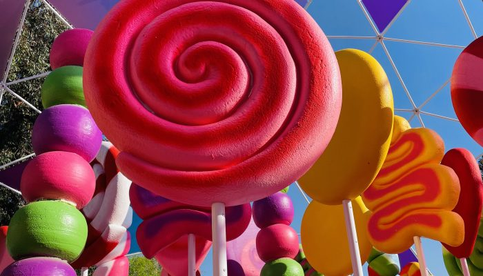 Sugar Rush: A Candy and Photo Lover's Dream!